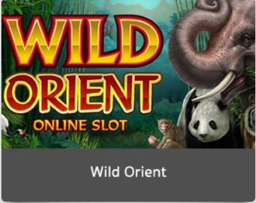 Wild Orient | LuckyNiki